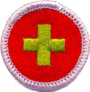 Troop 482 on medical checklist, medical papers, medical backgrounds, medical logo, medical charts, medical reports, medical history, medical paperwork, medical insurance, medical documentation, medical signs, medical flyers, medical schedule, medical treatment, medical privacy policy, medical records, medical questionnaire, medical documents, medical files, medical information,